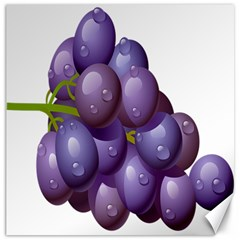 Grape Fruit Canvas 12  X 12   by Mariart
