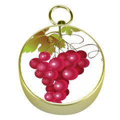 Red Fruit Grape Gold Compasses