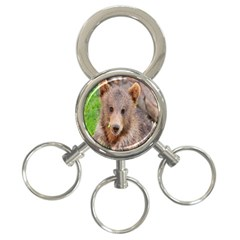Baby Bear Animals 3 Ring Key Chains by Mariart