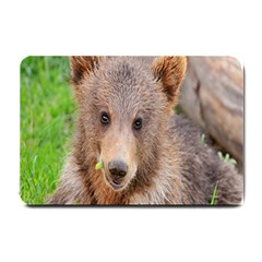 Baby Bear Animals Small Doormat  by Mariart