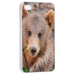 Baby Bear Animals Apple Iphone 4/4s Seamless Case (white)