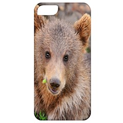Baby Bear Animals Apple Iphone 5 Classic Hardshell Case by Mariart