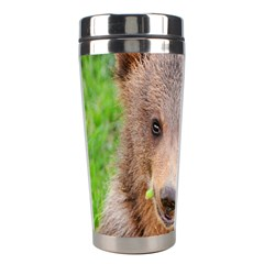 Baby Bear Animals Stainless Steel Travel Tumblers by Mariart