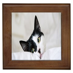 Cat Face Cute Black White Animals Framed Tiles by Mariart