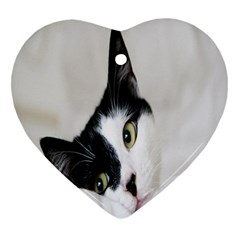 Cat Face Cute Black White Animals Heart Ornament (two Sides) by Mariart
