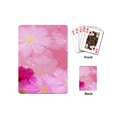 Cosmos Flower Floral Sunflower Star Pink Frame Playing Cards (mini)  by Mariart