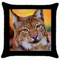 Tiger Beetle Lion Tiger Animals Throw Pillow Case (black) by Mariart