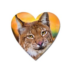 Tiger Beetle Lion Tiger Animals Heart Magnet by Mariart