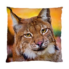 Tiger Beetle Lion Tiger Animals Standard Cushion Case (two Sides) by Mariart