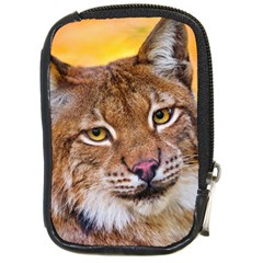 Tiger Beetle Lion Tiger Animals Compact Camera Cases by Mariart
