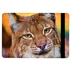 Tiger Beetle Lion Tiger Animals Ipad Air Flip by Mariart