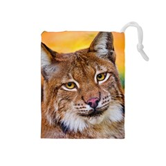 Tiger Beetle Lion Tiger Animals Drawstring Pouches (medium)  by Mariart