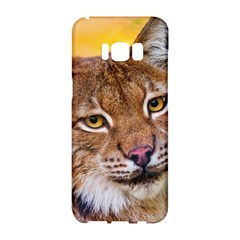 Tiger Beetle Lion Tiger Animals Samsung Galaxy S8 Hardshell Case