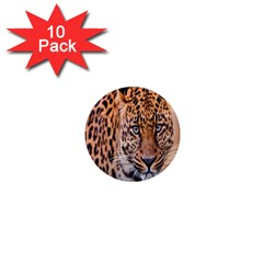 Tiger Beetle Lion Tiger Animals Leopard 1  Mini Magnet (10 Pack)  by Mariart