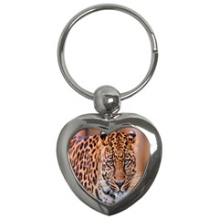Tiger Beetle Lion Tiger Animals Leopard Key Chains (heart)  by Mariart