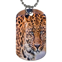 Tiger Beetle Lion Tiger Animals Leopard Dog Tag (two Sides) by Mariart