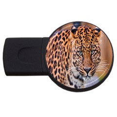 Tiger Beetle Lion Tiger Animals Leopard Usb Flash Drive Round (2 Gb) by Mariart