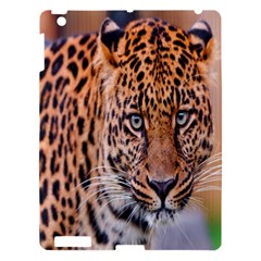 Tiger Beetle Lion Tiger Animals Leopard Apple Ipad 3/4 Hardshell Case by Mariart