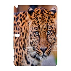 Tiger Beetle Lion Tiger Animals Leopard Galaxy Note 1 by Mariart