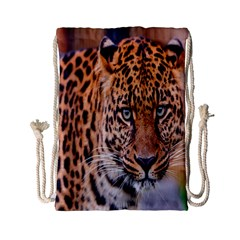 Tiger Beetle Lion Tiger Animals Leopard Drawstring Bag (small) by Mariart