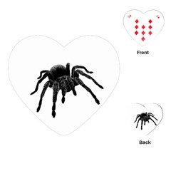 Tarantula Playing Cards (heart)  by Valentinaart