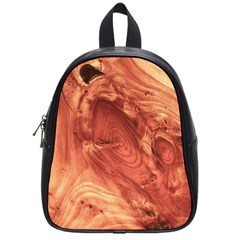 Fantastic Wood Grain 917b School Bag (small) by MoreColorsinLife