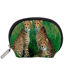 Animals Cheetah Accessory Pouches (small)  by Jojostore