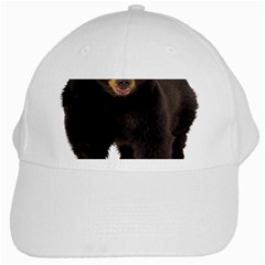 Brown Bears Animals White Cap by Jojostore