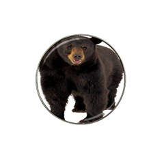 Brown Bears Animals Hat Clip Ball Marker (4 Pack) by Jojostore