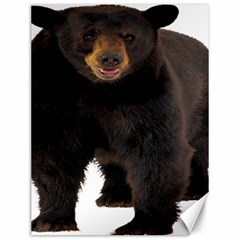 Brown Bears Animals Canvas 12  X 16