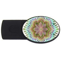 Star Flower Glass Sexy Chromatic Symmetric Usb Flash Drive Oval (4 Gb)