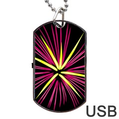 Fireworks Pink Red Yellow Black Sky Happy New Year Dog Tag Usb Flash (two Sides)