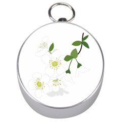 Flower Floral Sakura Silver Compasses by AnjaniArt