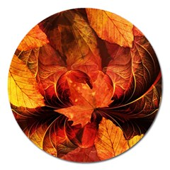 Ablaze With Beautiful Fractal Fall Colors Magnet 5  (round) by jayaprime