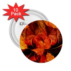 Ablaze With Beautiful Fractal Fall Colors 2 25  Buttons (10 Pack)  by jayaprime