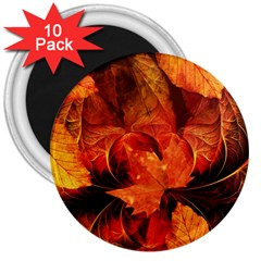 Ablaze With Beautiful Fractal Fall Colors 3  Magnets (10 Pack)  by jayaprime