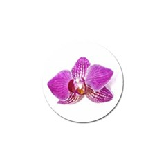 Lilac Phalaenopsis Aquarel  Watercolor Art Painting Golf Ball Marker (10 Pack) by picsaspassion