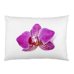 Lilac Phalaenopsis Aquarel  Watercolor Art Painting Pillow Case (two Sides) by picsaspassion