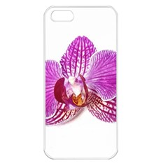 Lilac Phalaenopsis Aquarel  Watercolor Art Painting Apple Iphone 5 Seamless Case (white) by picsaspassion