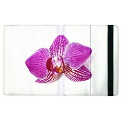 Lilac Phalaenopsis Aquarel  Watercolor Art Painting Apple Ipad 2 Flip Case by picsaspassion