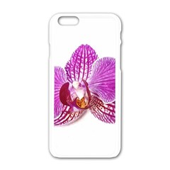 Lilac Phalaenopsis Aquarel  Watercolor Art Painting Apple Iphone 6/6s White Enamel Case by picsaspassion