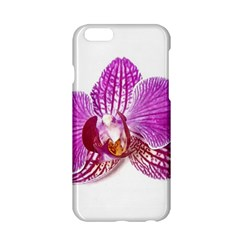 Lilac Phalaenopsis Aquarel  Watercolor Art Painting Apple Iphone 6/6s Hardshell Case