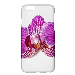 Lilac Phalaenopsis Aquarel  Watercolor Art Painting Apple Iphone 6 Plus/6s Plus Hardshell Case by picsaspassion