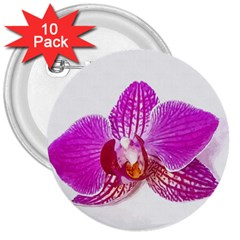 Lilac Phalaenopsis Flower, Floral Oil Painting Art 3  Buttons (10 Pack)  by picsaspassion