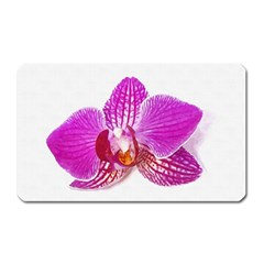 Lilac Phalaenopsis Flower, Floral Oil Painting Art Magnet (rectangular)