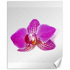 Lilac Phalaenopsis Flower, Floral Oil Painting Art Canvas 16  X 20   by picsaspassion