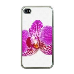 Lilac Phalaenopsis Flower, Floral Oil Painting Art Apple Iphone 4 Case (clear) by picsaspassion