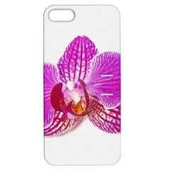 Lilac Phalaenopsis Flower, Floral Oil Painting Art Apple Iphone 5 Hardshell Case With Stand by picsaspassion