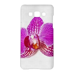Lilac Phalaenopsis Flower, Floral Oil Painting Art Samsung Galaxy A5 Hardshell Case  by picsaspassion
