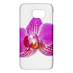 Lilac Phalaenopsis Flower, Floral Oil Painting Art Galaxy S6 by picsaspassion